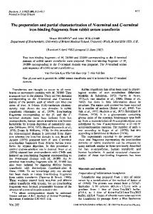 The preparation and partial characterization ofN-terminal and ... - NCBI
