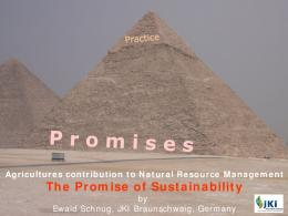 The Promise of Sustainability