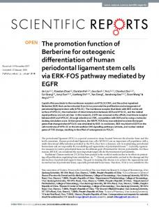 The promotion function of Berberine for osteogenic