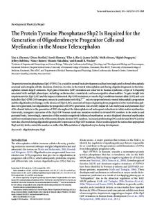 The Protein Tyrosine Phosphatase Shp2 Is Required for the ...