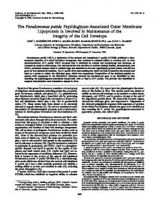 The Pseudomonas putida Peptidoglycan-Associated Outer ... - NCBI