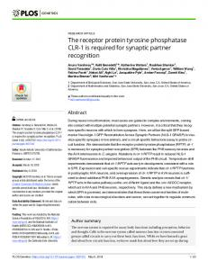 The receptor protein tyrosine phosphatase CLR-1 is required ... - PLOS