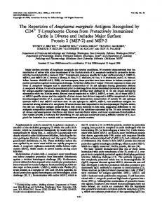 The Repertoire of Anaplasma marginale Antigens Recognized by CD4 ...