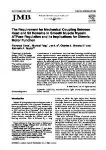 The Requirement for Mechanical Coupling ... - Semantic Scholar