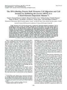 The RNA-Binding Protein HuR Promotes Cell Migration and Cell ...