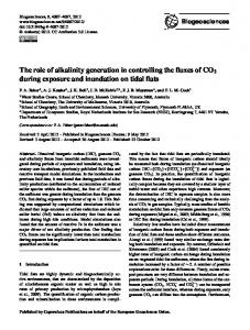The role of alkalinity generation in controlling the ... - Biogeosciences