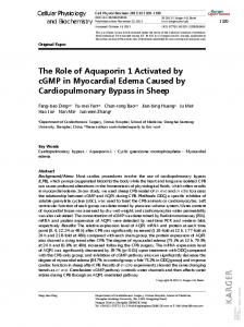 The Role of Aquaporin 1 Activated by cGMP in