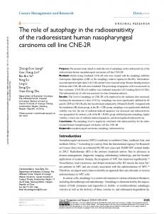 The role of autophagy in the radiosensitivity of the
