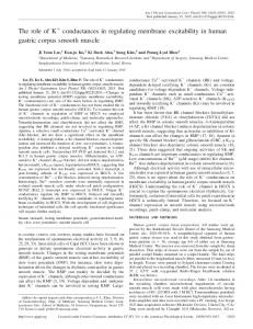 The role of K conductances in regulating membrane excitability in ...