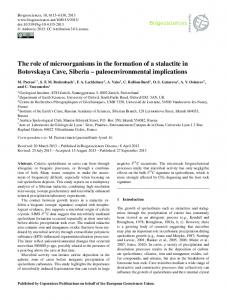 The role of microorganisms in the formation of a ... - Biogeosciences