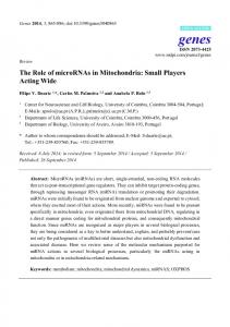 The Role of microRNAs in Mitochondria: Small Players Acting ... - MDPI