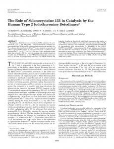 The Role of Selenocysteine 133 in Catalysis by the Human Type 2 ...