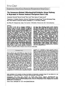 The Senescence?Related Mitochondrial ... - Wiley Online Library