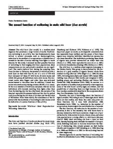 The sexual function of wallowing in male wild boar (Sus scrofa ...