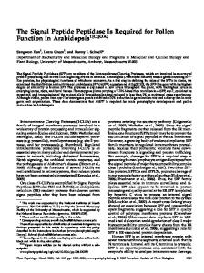 The Signal Peptide Peptidase Is Required for ... - Plant Physiology
