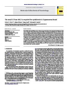 The small GTPase ARL2 is required for cytokinesis in ... - CyberLeninka