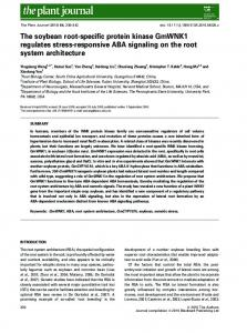 The soybean rootspecific protein kinase ... - Wiley Online Library