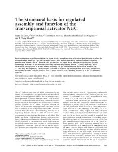 The structural basis for regulated assembly and function of the ...