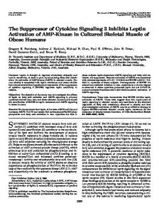 The Suppressor of Cytokine Signaling 3 Inhibits Leptin Activation of ...