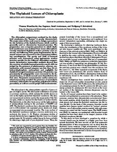 The Thylakoid Lumen of Chloroplasts - The Journal of Biological ...
