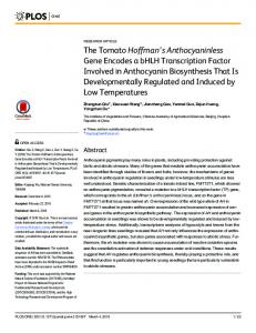 The Tomato Hoffman's Anthocyaninless Gene Encodes a ... - PLOS