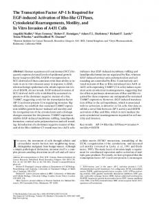 The Transcription Factor AP-1 Is Required for EGF ... - CiteSeerX