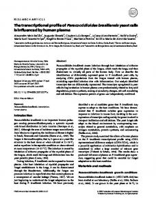 The transcriptional profile of Paracoccidioides ... - Wiley Online Library