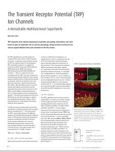 The Transient Receptor Potential (TRP) Ion Channels