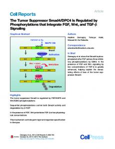 The Tumor Suppressor Smad4/DPC4 Is Regulated by ...