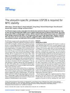 The ubiquitin-specific protease USP28 is required for MYC stability