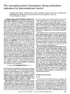 The uncoupling protein thermogenin during acclimation: indications ...
