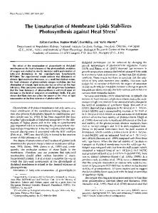 The Unsaturation of Membrane Lipids Stabilizes Photosynthesis ...