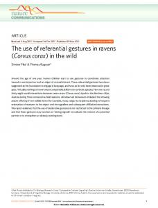 The use of referential gestures in ravens (Corvus corax) in the ... - Nature