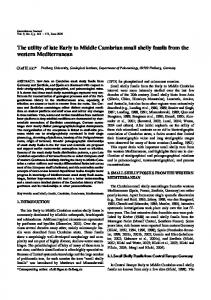 The utility of late Early to Middle Cambrian small shelly ... - Springer Link