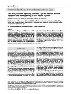 The Wnt/Catenin Signaling Pathway Tips the ... - Wiley Online Library