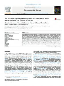 The zebrafish amyloid precursor protein-b is required for motor ... - Core