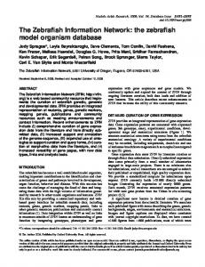 The Zebrafish Information Network: the zebrafish model ... - CiteSeerX