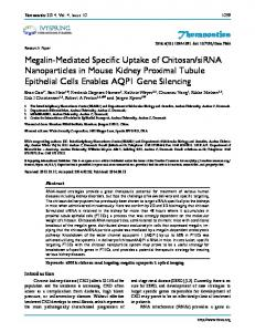 Theranostics Megalin-Mediated Specific Uptake of Chitosan/siRNA ...