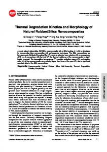 Thermal Degradation Kinetics and Morphology of