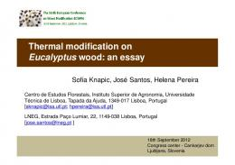 Thermal modification on Eucalyptus wood: an essay