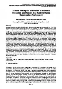 Thermo-Ecological Evaluation of Biomass Integrated