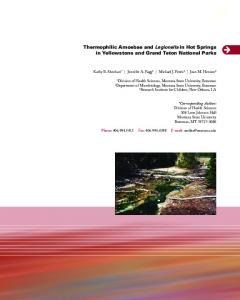 Thermophilic Amoebae and Legionella in Hot Springs in Yellowstone ...