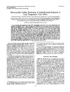 Thermophilic Sulfate Reduction in Hydrothermal Sediment of