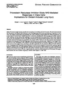 Thioredoxin Reductase Inhibition Elicits Nrf2 ... - Semantic Scholar