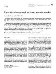 Thymic epithelial progenitor cells and thymus regeneration - Nature