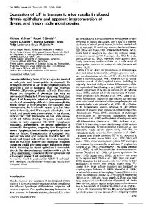 thymic epithelium and apparent interconversion of thymic and ... - NCBI