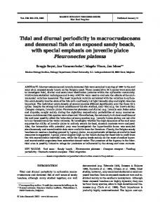 Tidal and diurnal periodicity in macrocrustaceans and demersal fish of ...