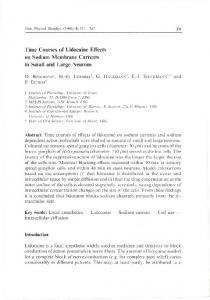 Time Courses of Lidocaine Effects on Sodium Membrane Currents in