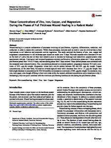 Tissue Concentrations of Zinc, Iron, Copper, and