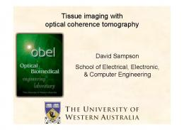 Tissue imaging with optical coherence tomography